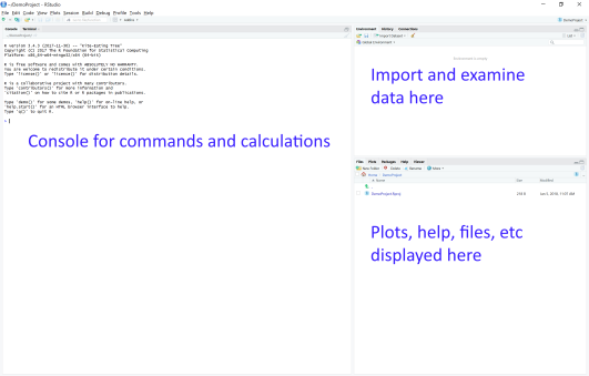 Basics of Importing Data in to RStudio – Great Lines Writing and